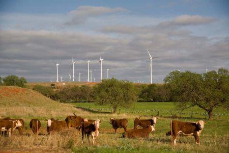 red hills wind farm