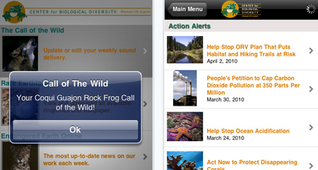 Wild Calls
