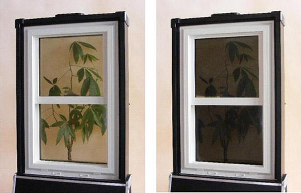 Raven_Window