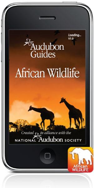 Audobon_African_Wildlife