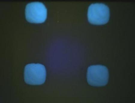Organic LEDs