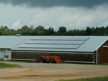 Solar Poultry