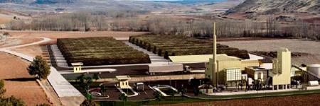 Iberdrola Biomass Plant