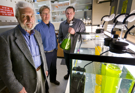 Montana State University algae researchers