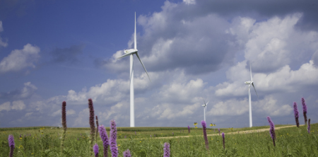 wind power, Iberdrola Renewables
