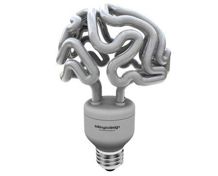 Insight CFL bulb