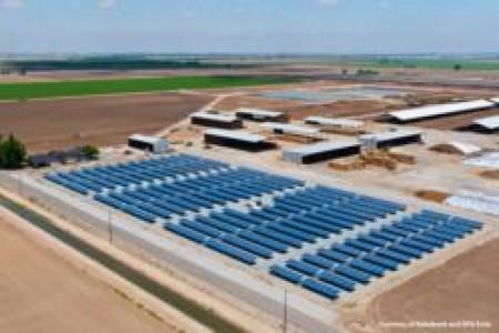 Dairy Solar