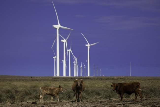 Penascal Wind Farm