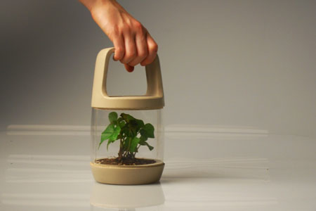 Eco-lantern