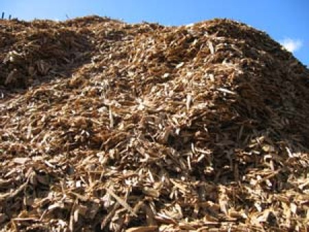 Woody Waste for Bioenergy