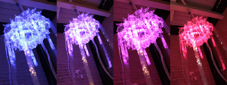 Jellyfish LED lights