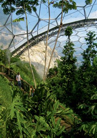 The Eden Project Rainforest Biome