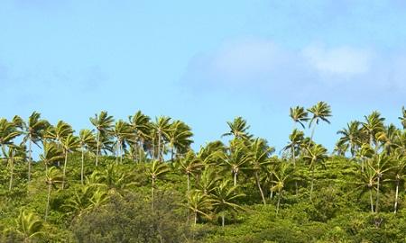 Tonga, solar power