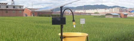 AgriSolar solar insect killer