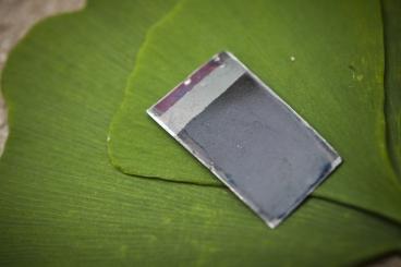 artificial-leaf