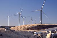 avista + wind
