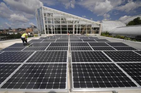 Phipps SolarWorld solar panels