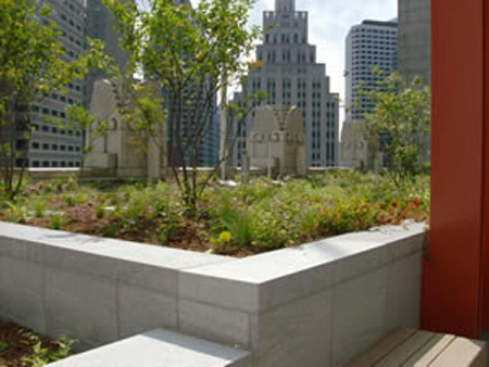 view from EPA Boston headquarters green roof