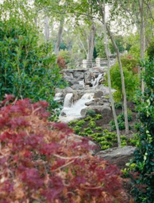 Via Dallas Arboretum