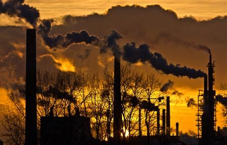 climate change, susan kraemer