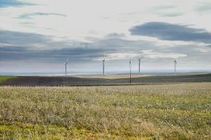patu-wind-farm