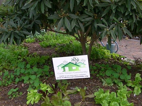 Code Green Community