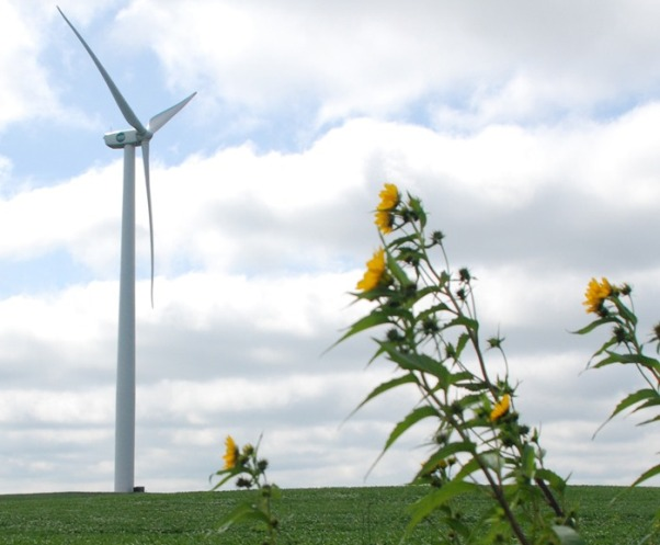 ILEC Wind Farm