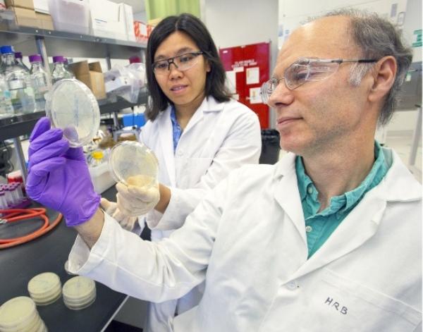 Methyl Ketone Biofuel