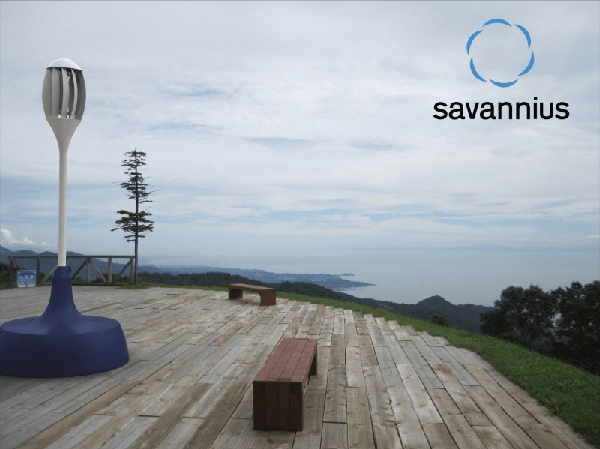 Savannius wind turbine