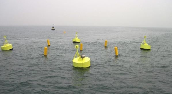 seaweed cultivation, offshore wind ecofys