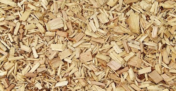 savannah river site biomass plant,ameresco