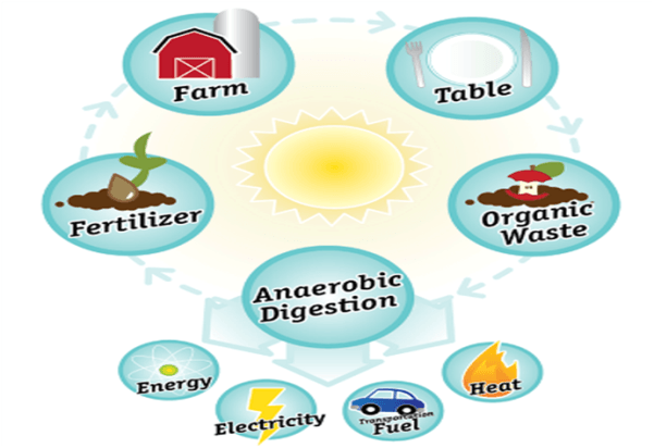 Anaerobic Digestion-CWP