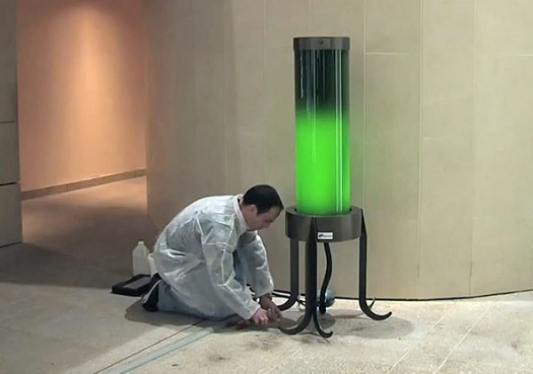 Calleja C02 Algae Lamp