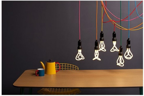 Plument Light Bulbs