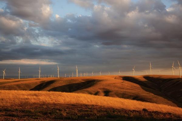 first-wind-farm