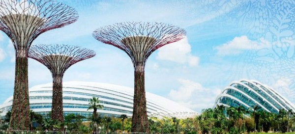 bay-south-garden-solar-trees