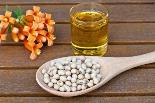 biofuels,biodiesel,soybean oil
