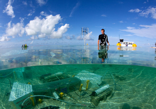 Stanford Coral Reef Laboratory