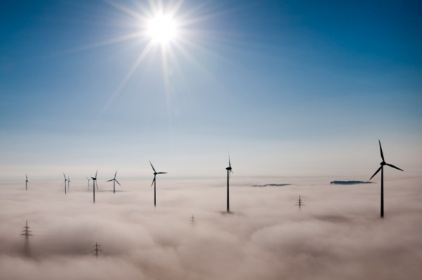 global wind day photography winner