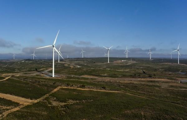 PTC wind