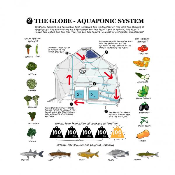 Globe/Hedron System