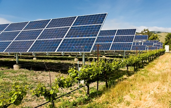 california distributed solar generation