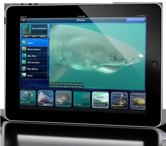 Shark Net app