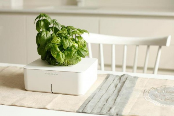 click and grow smartpot