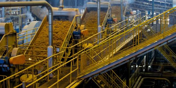 biofuels empa