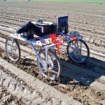 blue-river-technology-weed-pulling-robot