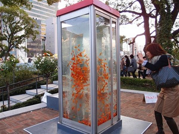 kingyobu phone booth 2