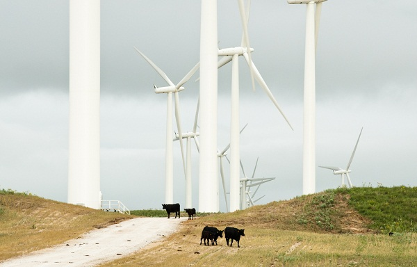 Wind farm near Lake Benton, Minn. (image via Shutterstock)