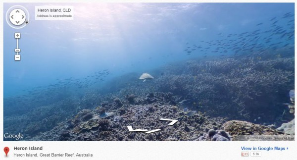 underwater-google-maps-heron-island