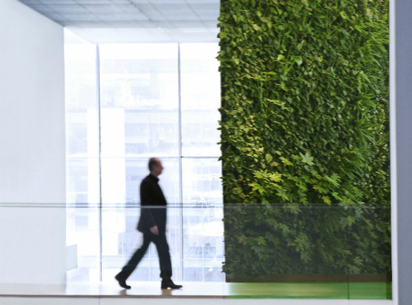 vertical-garden-vancouver-green-wall